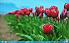 Windows8rp_e01_tn