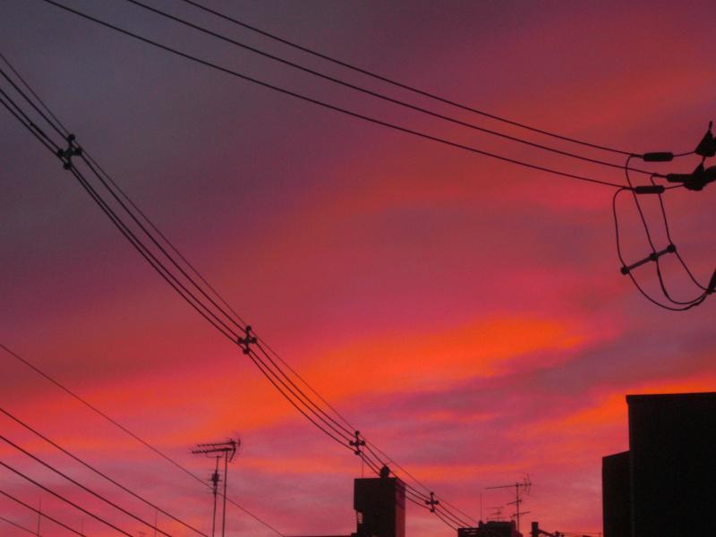 きょうの夕焼け(と上弦の月)