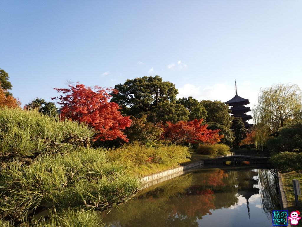 きょうの紅葉(東寺)