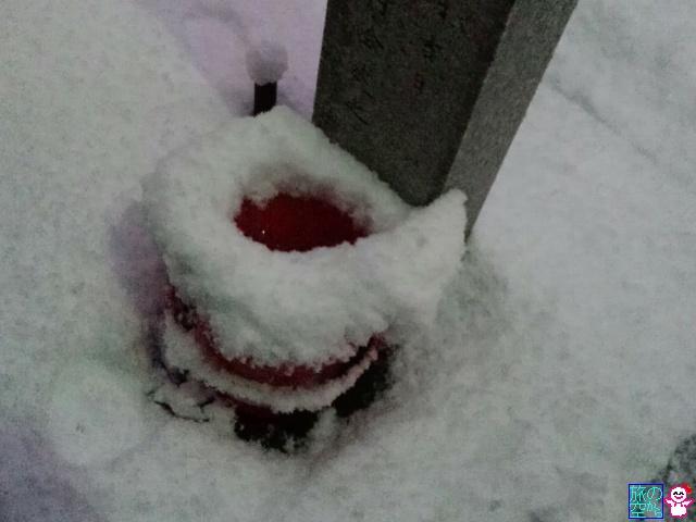 きょうの雪(58年ぶり?)