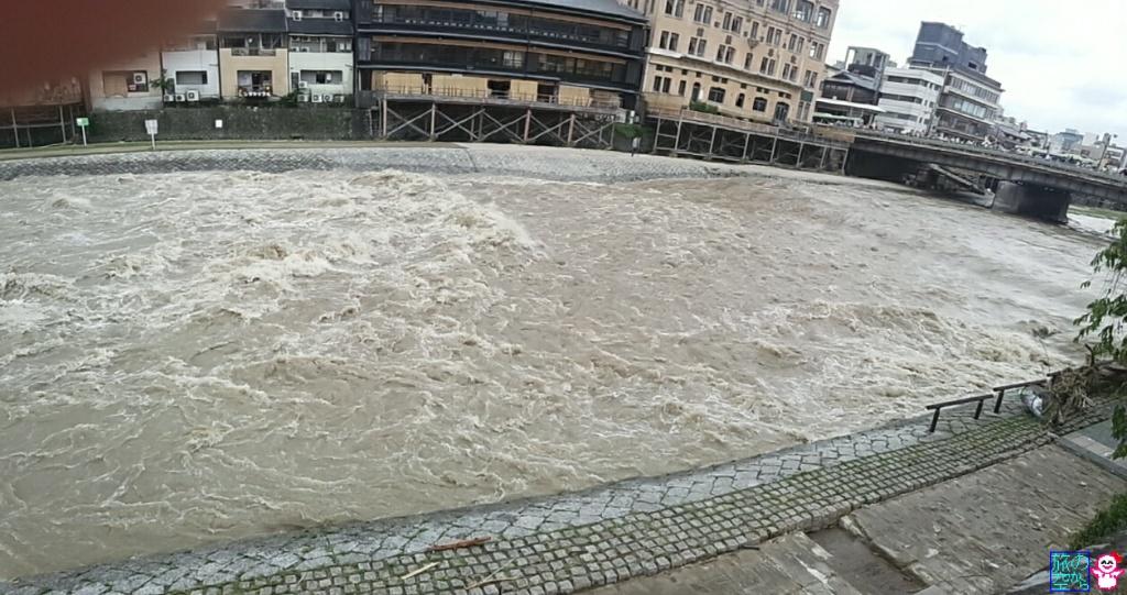 きょうの鴨川。