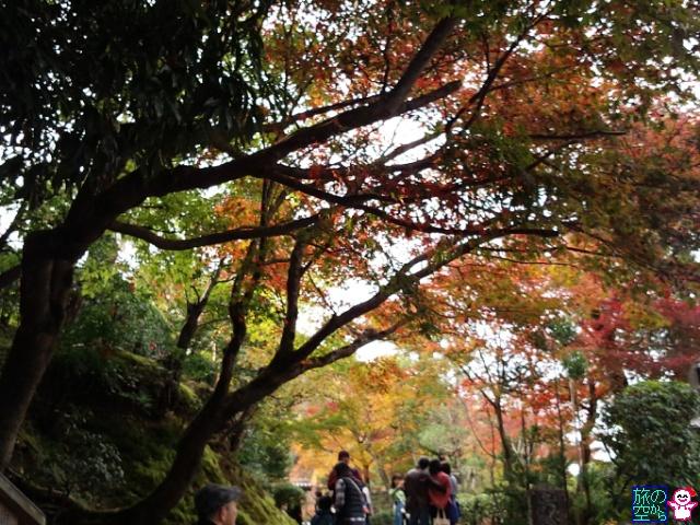 きょうの紅葉(化野念仏寺前)