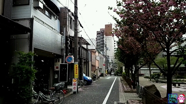 きょうの桜の名残(修徳公園)