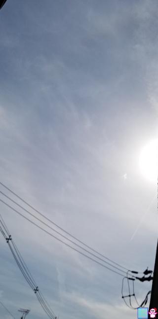 きょうのハロ(烏丸松原)
