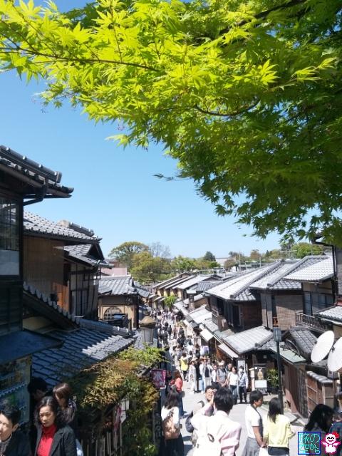 清水寺(本堂工事中)